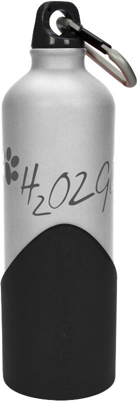 Láhev na vodu H2O2GO - 750 ml - stříbrná