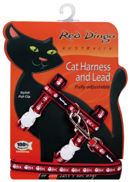Postroj RD s vodítkem - kočka - Fisbone Red