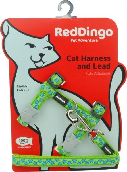 Postroj RD s vodítkem - kočka- Stars Turquoise
