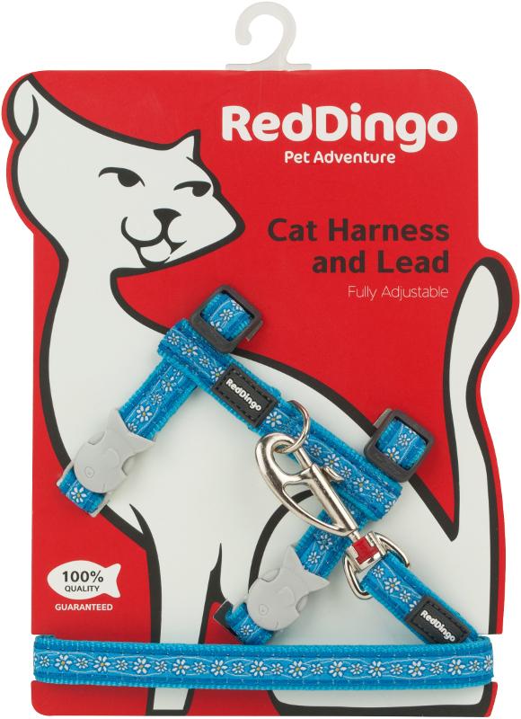 Postroj RD s vodítkem - kočka- Daisy Chain Turq.