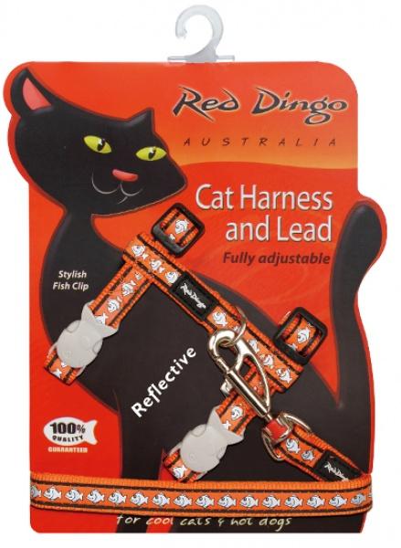 Postroj RD s vodítkem - kočka - Fish Rfx- Oranžová