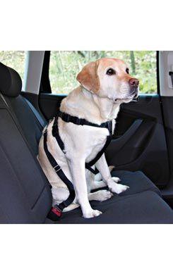 Postroj pes Bezpečnostní do auta XL Trixie