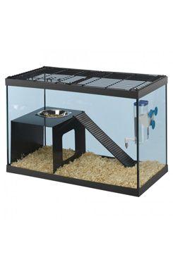 Box skleněný RATATOUT 60 59,5x30,5x39,5cm, krysa FP